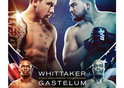 Whittaker Gastelum fight